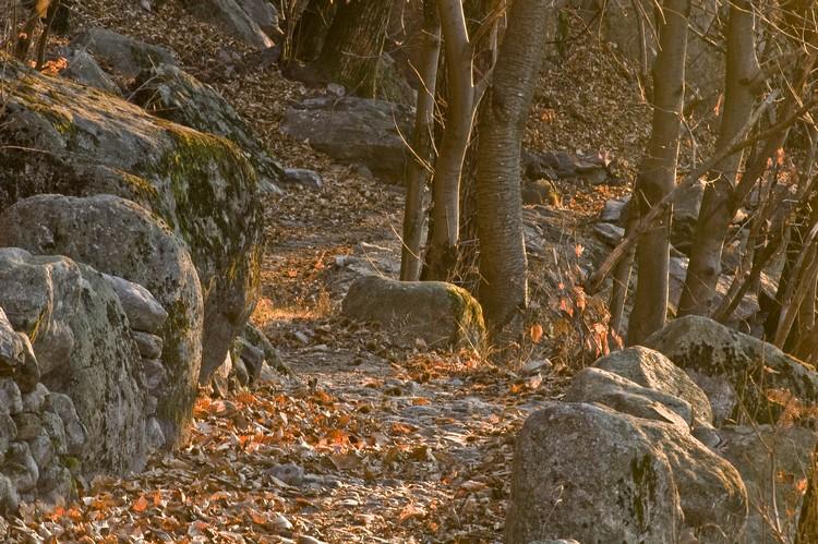 Sentiero valle Spluga